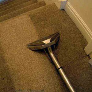 best carpet cleaners in orange