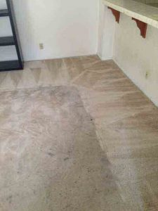 carpet cleaning dana point
