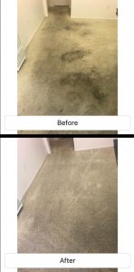 carpet cleaning in fullerton ca