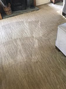 best carpet cleaners orange county