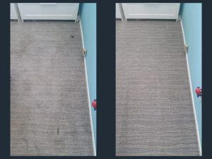 spot removal carpet cleaning in orange county california